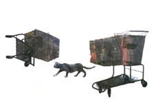 Carts with Cat Group